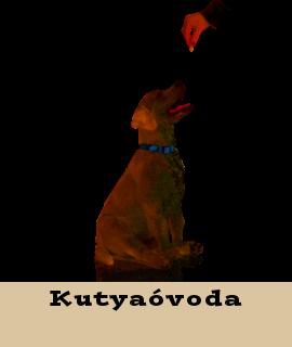 Kutyaóvoda